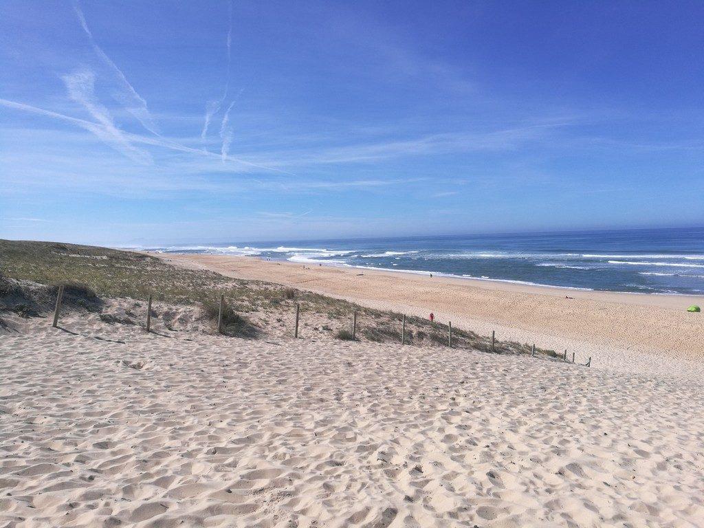 Boulesteix_Oti Landes Atlantique Sud