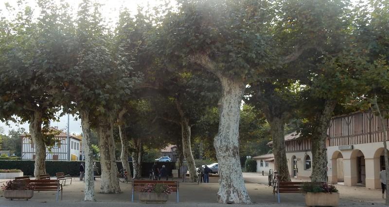 Le fronton et la Place du village Moliets